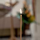 Pamaldų tvarka Visų Šventųjų ir Vėlinių dienomis